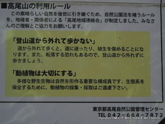 P7090162.JPG